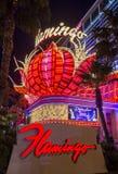 Las Vegas, Flamingo Stock Foto