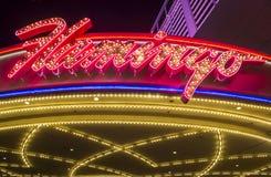Las Vegas, Flamingo Royalty-vrije Stock Foto's