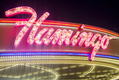 Las Vegas , Flamingo Royalty Free Stock Photos