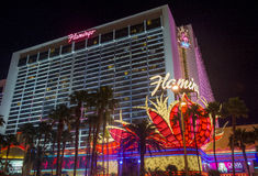 Las Vegas , Flamingo Royalty Free Stock Image