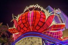 Las Vegas , Flamingo Stock Images