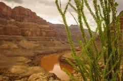 Las Vegas Grand Canyon el río Colorado Imagenes de archivo