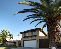 Las Vegas Home. Two-story Las Vegas Home with large royal palms on a clear day. House features an archway protecting the front entrance and three car garage. The royalty free stock photography