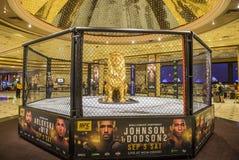 Las Vegas MGM Fotografia Royalty Free