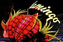 Las Vegas Flamingo Hotel Neon Stock Images