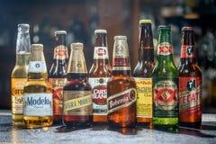 LAS VEGAS, NV - LIPIEC 17, 2016: Popularni Meksykańscy piwa Pacifico, obrazy royalty free