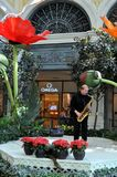 Las Vegas - Saxofonist at Bellagio hotel. August 2013 - Las Vegas, Nevada (USA) - Saxofonist playing at Bellagio hotel with Omega store in the background and Stock Images