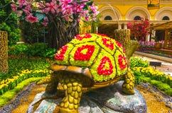 Las Vegas, Stany Zjednoczone Ameryka, Maj - 05, 2016: Japoński kwiecenie ogród przy luksusowym hotelem Bellagio Obraz Stock