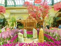 Las Vegas, Stany Zjednoczone Ameryka, Maj - 05, 2016: Japoński kwiecenie ogród przy luksusowym hotelem Bellagio Obraz Royalty Free