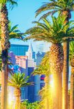Las Vegas Strip Scenery. Vegas Palms and the Strip in Vertical Photography stock photography