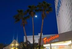 Las Vegas, Tropicana Imagem de Stock Royalty Free