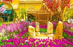 Las Vegas, United States of America - May 05, 2016: The Japanese flowering garden at luxury hotel Bellagio. At Las Vegas, United States of America royalty free stock image