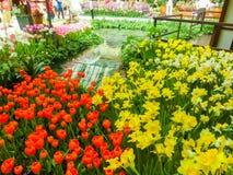 Las Vegas, United States of America - May 05, 2016: The Japanese flowering garden at luxury hotel Bellagio. At Las Vegas, United States of America stock photo
