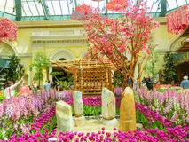Las Vegas, United States of America - May 05, 2016: The Japanese flowering garden at luxury hotel Bellagio. Las Vegas, United States of America - May 05, 2016 royalty free stock image