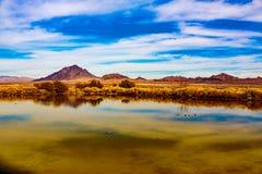 Las Vegas våtmarker & berg Royaltyfri Fotografi