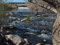 The Las Vegas Wash, Clark County Wetlands, Las Vegas. The swollen Las Vegas wash, which collects run-off from the city and channels it towards Lake Mead, flows Royalty Free Stock Images
