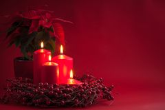 Las velas ardientes rojas de Advent Christmas con las bayas enrruellan y poinsetia en un fondo rojo Fotos de archivo libres de regalías