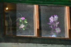Las ventanas del vintage con los marcos de madera, detrás del vidrio son las flores artificiales vistas en potes, la pared de una Imagen de archivo libre de regalías