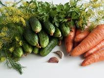 Las verduras del verano cosechan en la tabla Foto de archivo
