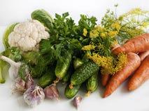 Las verduras del verano cosechan en la tabla Imágenes de archivo libres de regalías