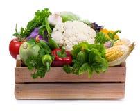 Las verduras en caja de madera se aíslan en blanco Foto de archivo libre de regalías