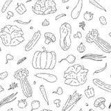 Las verduras inconsútiles del modelo alinean garabato La col de las variedades y el otro negro del bosquejo del vector de los for stock de ilustración