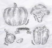 Las verduras sazonan con pimienta, calabaza, ajo, bróculi Imágenes de archivo libres de regalías