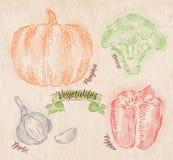 Las verduras sazonan con pimienta, calabaza, ajo, bróculi Foto de archivo libre de regalías