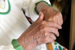 Las viejas manos arrugadas femeninas sostienen el bastón de madera fotos de archivo