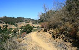 Las Virgenes Overlook Trail. Trail through trees on a hillside, Malibu, CA Royalty Free Stock Photo