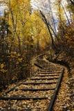 las wędrownej jesieni toru Obrazy Stock