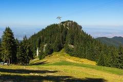 Las w górze Fotografia Royalty Free