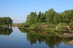 Las w promieniach położenie jesieni słońce na brzeg rzekim zdjęcie royalty free