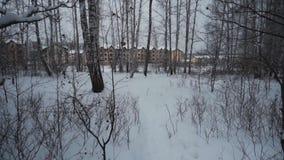 Las w zimie Mnóstwo śnieg POV Wideo od pierwszy osoby Wyjście od lasu zbiory