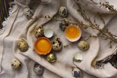 Las yemas de huevo del pollo quebrado egg en cáscara de huevo y vario pollo y Imagen de archivo libre de regalías