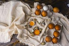 Las yemas de huevo del pollo quebrado egg en cáscara de huevo y vario pollo y Imágenes de archivo libres de regalías