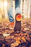 Las zapatillas de deporte de los pies de la mujer que caminan el caída se van al aire libre Imagenes de archivo