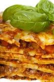 lasagna Стоковое фото RF