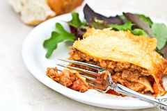 lasagna Royaltyfria Bilder