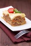 Lasagna Royalty-vrije Stock Foto's