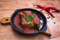 Lasagna bolognese in a hot frying pan Royalty Free Stock Photo