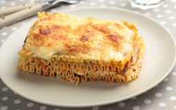 Lasagna bolognese on a plate Stock Images
