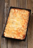 Lasagna em uma bandeja de cozimento fotos de stock