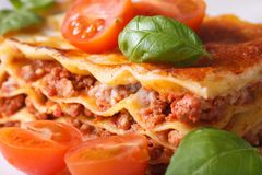 Lasagna with fresh basil and tomatoes macro horizontal Royalty Free Stock Images