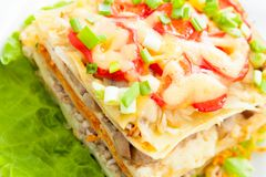 Lasagna hecho en casa recientemente cocido con las verduras y el queso Fotos de archivo