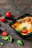 Lasagna in plastic box Royalty Free Stock Photo