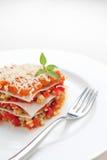 Lasagna, pomodoro e formaggio di verdure immagine stock libera da diritti