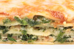 Lasagna ricotta and spinach Royalty Free Stock Photo