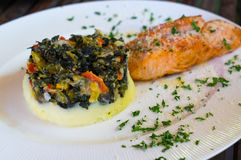 Lasagna and salmon grill Stock Photography