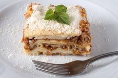 Lasagna served on a white plate Stock Images
